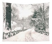 Central Park Winter Landscape Tapestry