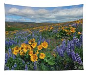 Central Washington Spring Tapestry