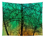 Change Of Seasons Number Tw0 Tapestry