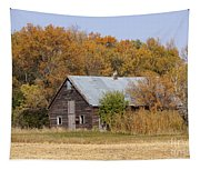 Changing Colors Tapestry