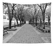 Charleston Waterfront Park Walkway - Black And White Tapestry