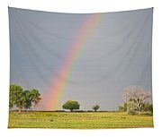 Chasing The Pot Of Gold  Tapestry
