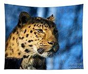 Cheetah Acinonyx Jubatus Tapestry