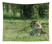 Cheetah At Attention Tapestry