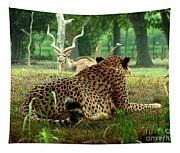 Cheetah Lunch-87 Tapestry