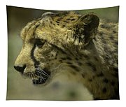 Cheetah On The Prowl Tapestry