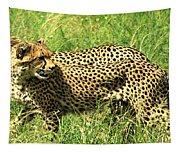 Cheetahs Running Tapestry