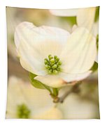 Cherokee Princess Dogwood Blossom In Beige Tapestry
