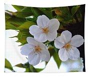 Cherry Blossom 2 Tapestry