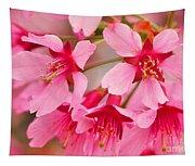 Cherry Blossom Special Tapestry