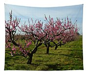 Cherry Trees Tapestry
