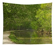 Chesapeake And Ohio Canal Towpath Tapestry
