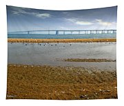 Chesapeake Bay Bridge Tapestry