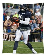 Chicago Bears Wr Armanti Edwards Training Camp 2014 07 Tapestry