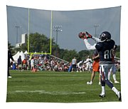 Chicago Bears Wr Armanti Edwards Training Camp 2014 08 Tapestry