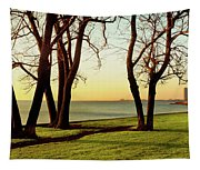 Chicago Lakefront Trail And Lincoln Tapestry