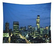 Chicago Skyline May 1983 Twilight Tapestry