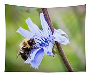 Chicory Bee Tapestry