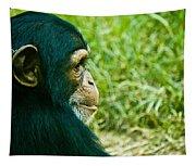 Chimpanzee Profile Tapestry