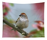 Chipping Sparrow In Blossoms Tapestry
