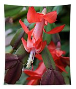 Christmas Cactus 1 Tapestry
