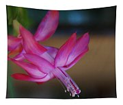 Christmas Cactus Bloom Tapestry