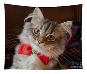 Christmas Kitten Tapestry