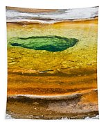 Chromatic Pool Vertical Tapestry
