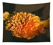 Chrysanthemum Gently Floating In The Fountain Of Campo De Fiori - Rome - Italy Tapestry