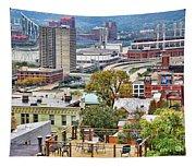 Cincinnati Rooftop 9965 Tapestry