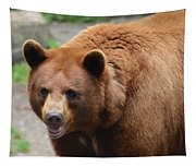 Cinnamon Black Bear Tapestry