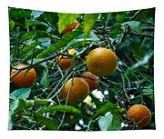 Citrus Sinensis Tapestry