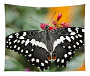 Citrus Swallowtail Butterfly  Tapestry
