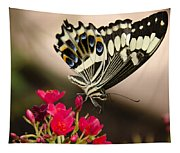 Citrus Swallowtail  Tapestry