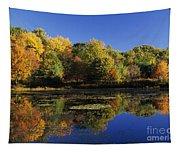 Clark Pond - Auburn New Hampshire  Tapestry