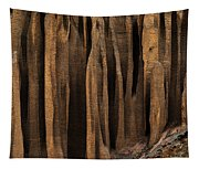 Clay Organ Pipes Formation In Front Tapestry