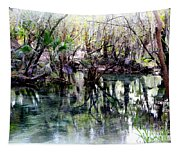 Clear Florida Springs Tapestry