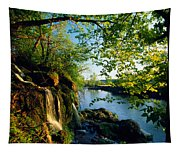Cliffs And Trees Along Malanaphy Tapestry
