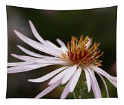 Climbing Aster Tapestry