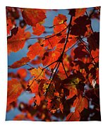 Close Up Of Bright Red Leaves With Blue Tapestry