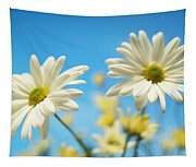 Close-up Of Daisies Against A Blue Tapestry