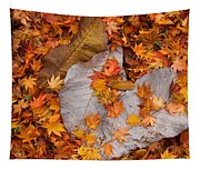 Close-up Of Fallen Maple Leaves Tapestry