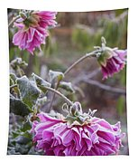 Close-up Of Flowers Covered By Frost Tapestry