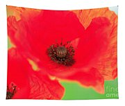 Close Up Poppies Tapestry
