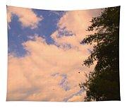 Cloud Slide Tapestry