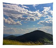 Clouds Over The Mountain Tapestry