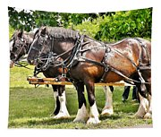 Clydesdale Horses Tapestry