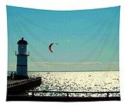 Coast To Coast Sea To Sky Flies Curiosity Crescent Kite Night Scenes On The Canal Carole Spandau Tapestry
