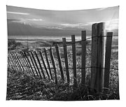 Coastal Dunes In Black And White Tapestry