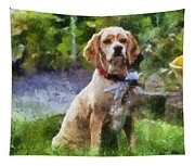 Cocker Spaniel Outside 04 Tapestry